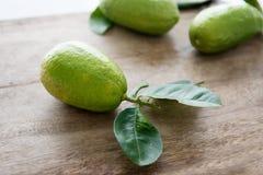无农药有机绿色柠檬 库存图片