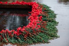 无名战士坟茔的多雨看法和永恒火焰在亚历山大在克里姆林宫墙壁附近从事园艺在莫斯科,俄罗斯 红色康乃馨 免版税库存图片