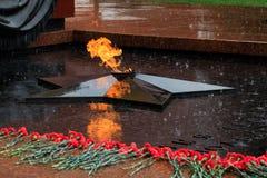 无名战士坟茔的多雨看法和永恒火焰在亚历山大在克里姆林宫墙壁附近从事园艺在莫斯科 免版税库存图片