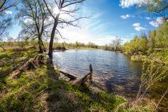 无名的湖在一个夏日 库存照片