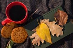 无奶咖啡、曲奇饼、日志和秋叶在羊毛毯子 库存照片