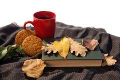 无奶咖啡、曲奇饼、日志和秋叶在羊毛毯子 免版税库存照片