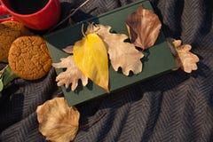 无奶咖啡、曲奇饼、日志和秋叶在羊毛毯子 免版税库存图片