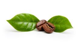 无奶咖啡豆,与叶子的五谷 免版税库存图片
