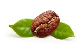 无奶咖啡豆,与叶子的五谷 库存照片