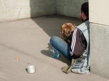 无家可归的人和狗在城市街道上 库存照片
