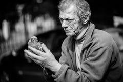 无家可归的人照片布拉格哀伤的街道 图库摄影
