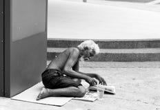 无家可归的老人读书新闻 库存图片