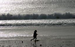 无忧无虑的海洋嬉戏 免版税库存图片