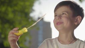 无忧无虑的男孩吹的肥皂泡和微笑的画象对照相机在公园 单独逗人喜爱的儿童消费时间 影视素材