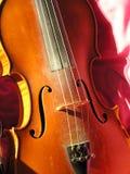 无意识而不停地拨弄小提琴 免版税图库摄影