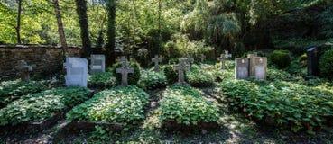 无提名的森林坟园 库存照片