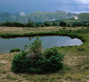 无提名的池塘和暴风云在森林峡谷,犹特人足迹,洛矶山国家公园,科罗拉多附近 库存照片