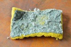无效绿色和黄色洗刷在木板的海绵 图库摄影