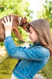无条件的爱 有棕色玩具狗狗的十几岁的女孩 图库摄影