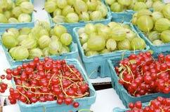 无核小葡萄干和鹅莓 库存照片