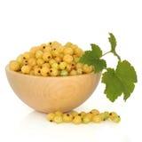 无核小葡萄干果子白色 免版税库存图片