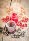 无核小葡萄干果酱用新鲜的浆果 库存图片