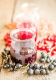 无核小葡萄干果酱用新鲜的浆果 库存照片