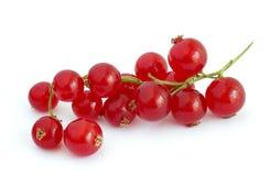 无核小葡萄干红色 免版税库存图片