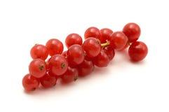 无核小葡萄干红色 库存图片
