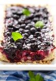无核小葡萄干蓝草莓饼 库存照片