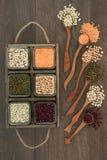 无水的豆子健康食品 图库摄影