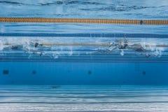 无法认出专业游泳者训练 库存照片