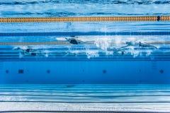 无法认出专业游泳者训练 免版税库存图片