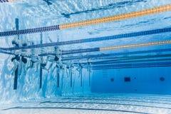 无法认出专业游泳者训练 免版税图库摄影