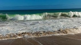 无法认出的人游泳在海 股票录像