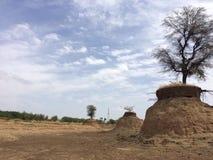 无生命大城市沙漠画廊的横向更多我的其他全景早先日落结构树差异工作 免版税库存照片