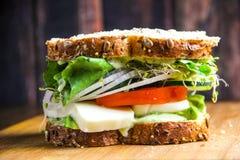 无盐干酪、蕃茄和新鲜的蓬蒿三明治 库存图片