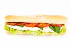 无盐干酪三明治蕃茄 免版税库存图片
