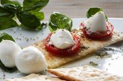 无盐干酪典型的意大利开胃菜 免版税图库摄影