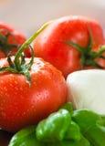 无盐干酪新鲜的蕃茄 库存照片