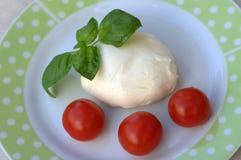 无盐干酪用蕃茄和蓬蒿 图库摄影