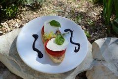 无盐干酪用蕃茄和蓬蒿- caprese的Insalata 库存照片