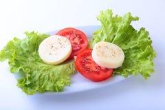无盐干酪的部分用蕃茄、莴苣叶子和芳香抚人的选矿在白色板材 选择聚焦特写镜头射击 免版税库存图片
