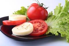 无盐干酪的部分用蕃茄、莴苣叶子和芳香抚人的选矿在黑色的盘子 选择聚焦特写镜头射击 免版税图库摄影