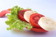 无盐干酪的部分用蕃茄,莴苣叶子和芳香抚人的选矿在红色portionen板材 查出在白色 库存图片