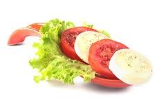 无盐干酪的部分用蕃茄,莴苣叶子和芳香抚人的选矿在红色portionen板材 查出在白色 免版税图库摄影