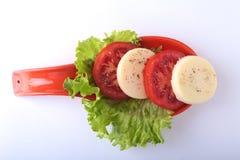无盐干酪的部分用蕃茄,莴苣叶子和芳香抚人的选矿在红色portionen板材 查出在白色 免版税库存图片