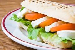 无盐干酪panini蕃茄 库存图片