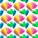 无缝五颜六色的花卉的模式 免版税库存图片