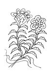 无缝亚洲花卉 无缝的蜡染布样式 在传染媒介的背景 向量例证