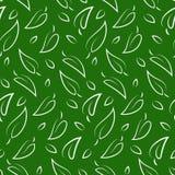 无缝叶子的模式 图库摄影