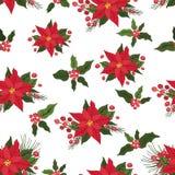 无缝圣诞节的模式 红色一品红,霍莉, 库存图片