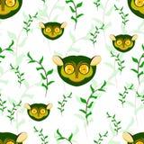 无缝在白色背景的tarsier画象与绿色le 库存图片