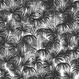无缝夏威夷的模式 库存例证